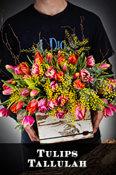 Tulips for Valentines delivery in Dallas